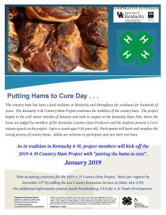 4-H Country Ham Project Flyer.