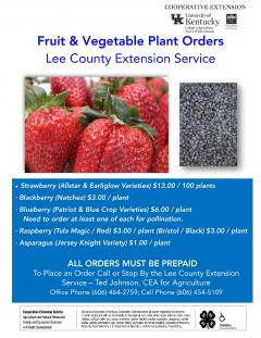Fruit and Vegetable Plant Order Flyer.